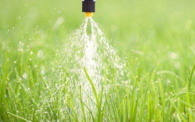 BASF é reconhecida como líder global em gestão de água