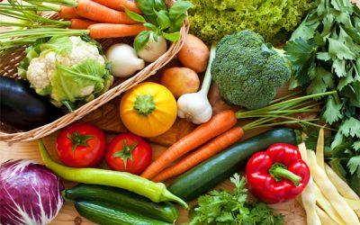 Conselho do Agro debate benefícios da comunicação do setor