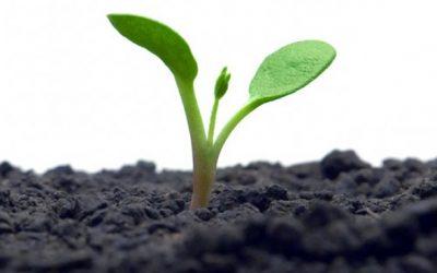 Novo estudo de ecoeficiência confirma benefícios ambientais do Sistema Campo Limpo