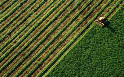BASF e European Space Agency irão viabilizar serviços digitais para os produtores