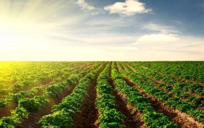 NOVA PESQUISA DE HÁBITOS DO PRODUTOR RURAL ABMRA AJUDA EMPRESAS DO AGRONEGÓCIO A DEFINIR ESTRATÉGIAS DE MARKETING E VENDAS