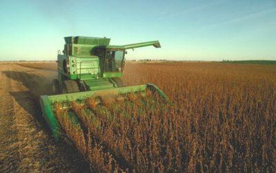 Recuperação da agroindústria deve favorecer resultados em 2017