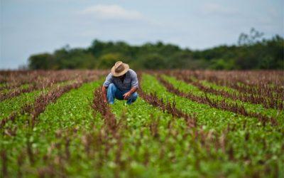 Pesquisa da ABMRA revela as profissões líderes no agronegócio