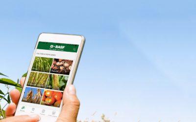 BASF lança aplicativo que facilita a busca de soluções para o melhor manejo nas lavouras