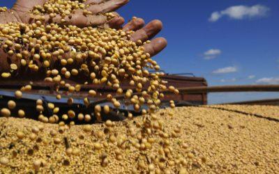 Agro tem 7 entre os 10 produtos mais exportados