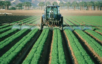 Melhora da produtividade é responsável por 80 % do crescimento da agropecuária