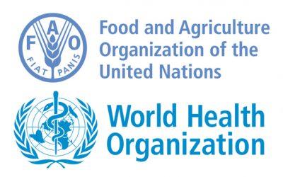 Pesquisadora Jalusa Kich integra grupo de especialistas da FAO e OMS