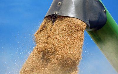 Agronegócio brasileiro segue expandindo as vendas externas