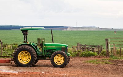 """Embrapa e empresas criam """"Associação Rede ILPF"""" para ampliar uso de sistemas integrados na agricultura"""