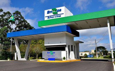 Lucro Social da Embrapa é de R$ 37,18 bilhões em 2017