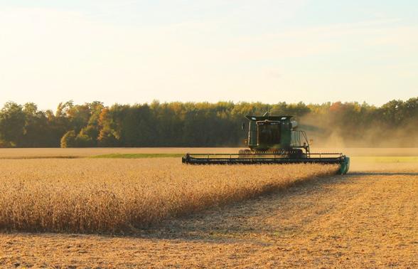 Agroindústria segue impulsionando PIB do agronegócio em 2018