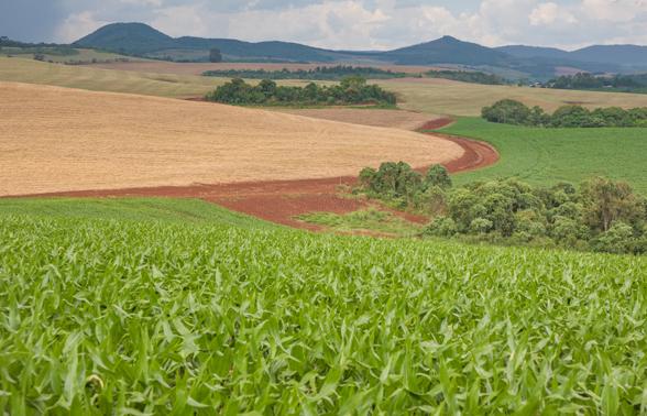 Prêmio Fazenda Sustentável: inscrições foram prorrogadas! Produtores de todo o Brasil têm até o dia 29 de julho para participar da premiação