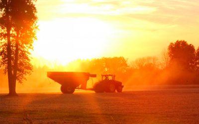 Governo eleva previsão de valor da produção agropecuária para R$562,4 bi