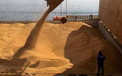 FAO recomenda investimentos em pesquisa para Brasil melhorar produtividade agrícola