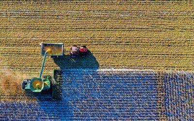 Valor da Produção Agropecuária é o maior dos últimos 31 anos