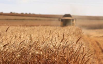 Conab estima novo recorde de 248 milhões de toneladas para produção de grãos