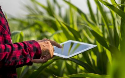 Digitalização do agro deve ser impulsionada pela pandemia
