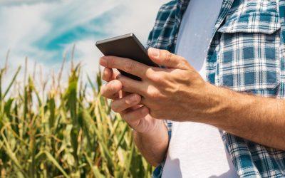 Aplicativo permite consultar janelas de plantio e auxilia produtor