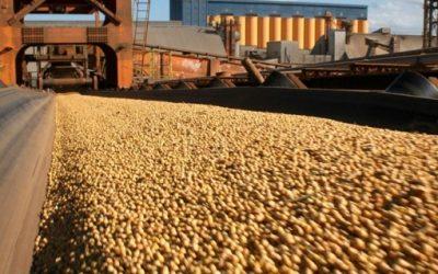 Boom! Agro exporta mais de US$ 100 bilhões em 2020