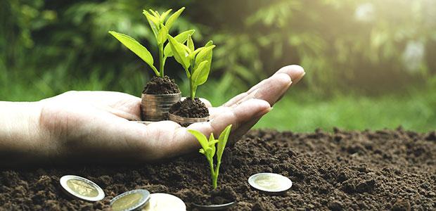Os green bonds estão chegando. E isso é bom para todos!