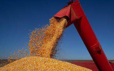 Conab aponta para produção estimada de grãos em 260,8 milhões de toneladas na safra 2020/2021