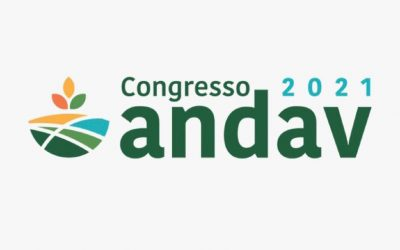 Agro: a importância do setor para garantir o alimento na mesa dos brasileiros e do mundo