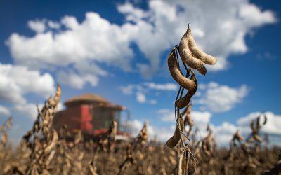 Avanço do PIB do agro do 1º semestre é de quase 10%